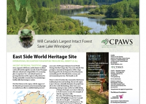 CPAWS Eastside Report